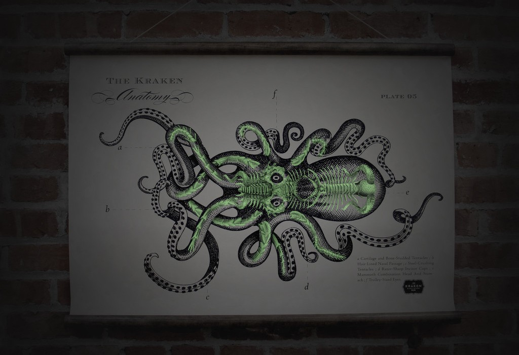 The Kraken Supply Store The Coolector