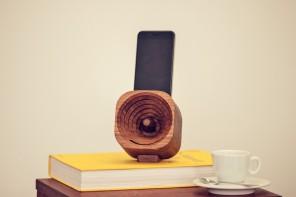 Trobla Wood Amplifier