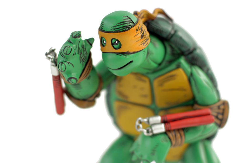 First_Turtle_Orange_6_1024x1024