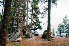 Camp Clayborne Bison Sleeping Bag Hammock