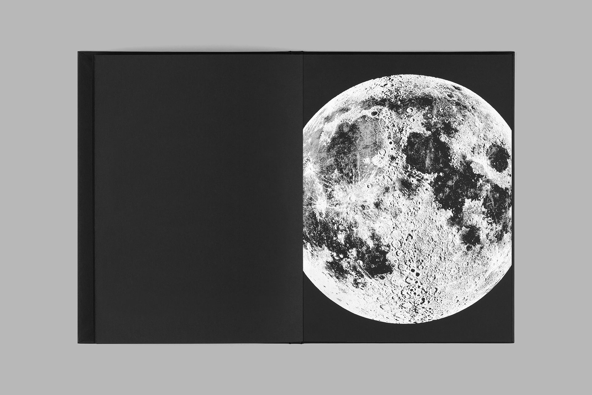 Moonbeams_web_171