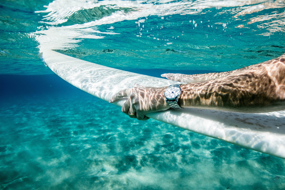 Stainless Steel White Duck Dive