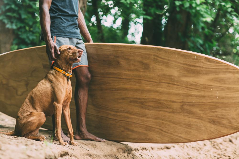 Wod+SUP+with+dog