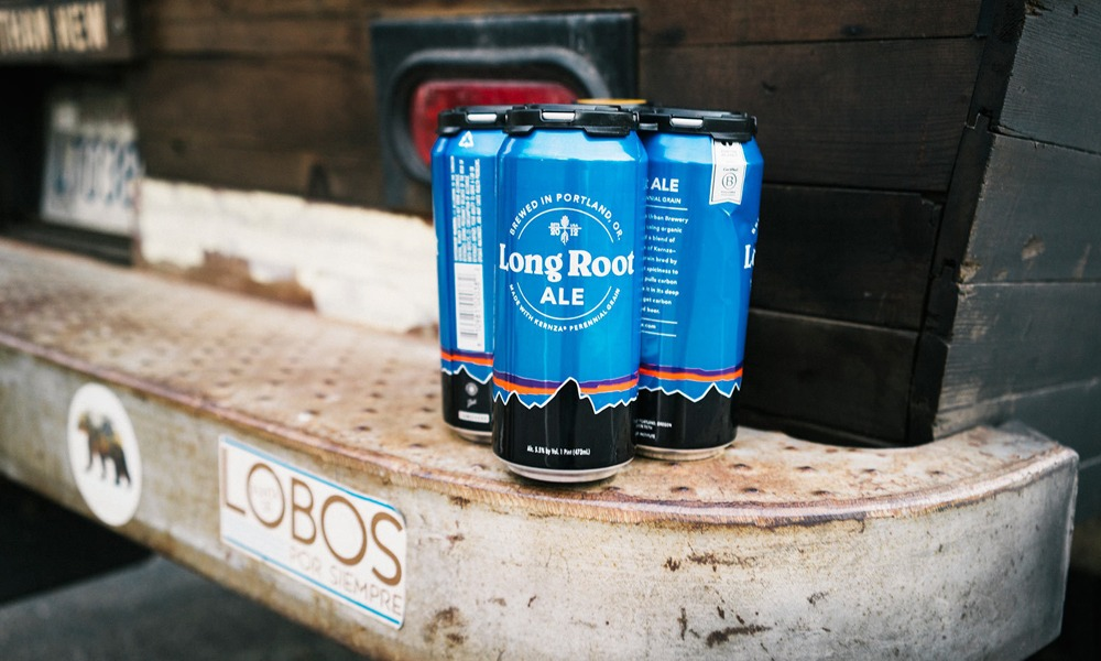 patagonia-provisions-long-root-ale-2