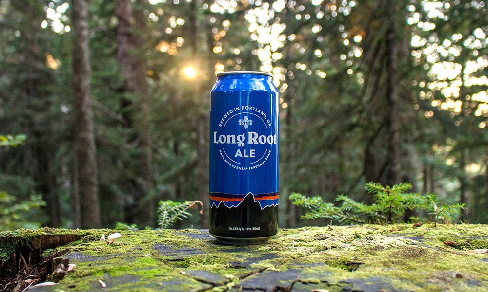 patagonia-provisions-long-root-ale-3