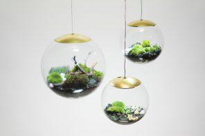Globe LED Terrarium