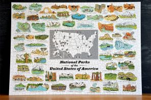 Brainstorm National Parks Puzzle