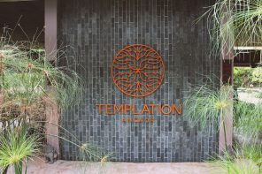 Templation, Siem Reap