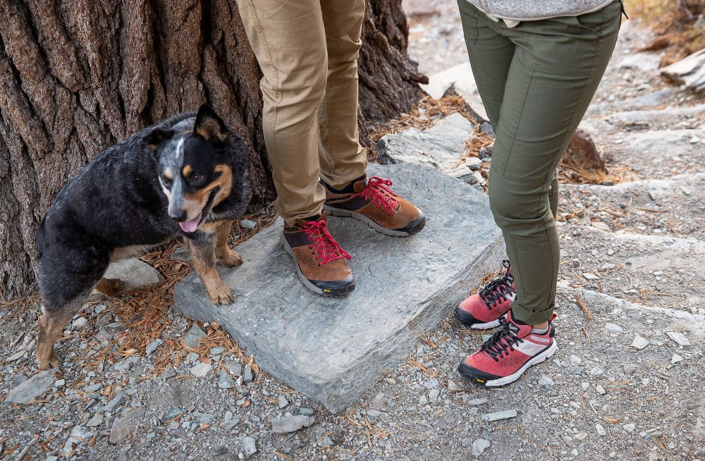 cfcc877672e Danner Trail 2650 Boots | The Coolector