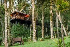 8 of the Best Airbnb Treehouses