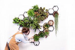 Horticus Modular Living Wall